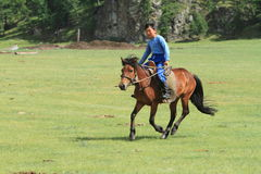 Mongol Equestrian immagini stock