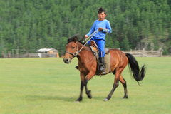 Mongol Equestrian Royalty Free Stock Images
