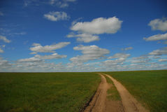 Mongolei-Grasstraße lizenzfreie stockfotografie