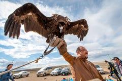 MONGOLEI - 17. Mai 2015: Besonders ausgebildeter Adler für die Jagd in der mongolischen Wüste nahe Ulaan-Baator Stockfoto