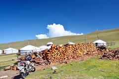 mongolië Gestapeld hout dichtbij de ingang aan het kamp dichtbij het meer Hovsgol dichtbij het dorp van khankhclose-up stock foto