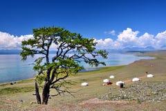 Mongolië, huis van 6 Mongoolse Yurt op de het Noordenkust van meer Hovsgol in de zomer Stock Afbeeldingen