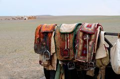 Mongolia – nomad horse saddles. Nomad saddles in the Yol Valley, Gobi Desert steppes, Mongolia with gers in the background Stock Photography
