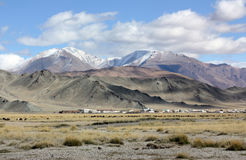Mongolia country Royalty Free Stock Photos