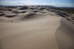 Mongolia dunes. The big dunes in mongolia desert Royalty Free Stock Photography