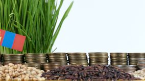 Mongolia flag waving with stack of money coins and piles of wheat. And rice seeds stock video