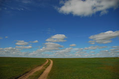 Mongolia grass road royalty free stock photo