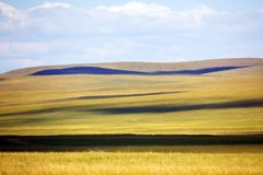 Mongolia grassland Stock Images