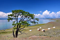 Mongolia, Home Of 6 Mongolian Yurt On The North Shore Of Lake Hovsgol In The Summer. Stock Images