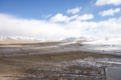 Mongolia Royalty Free Stock Image