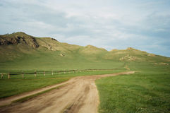 Mongolia Landscape: desertic green road Royalty Free Stock Photography