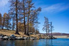 mongolia rzeki Obraz Royalty Free