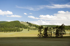 Mongolia's Northern Forests Stock Photography