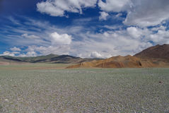 Mongolian Altai. Summer in mountains. Landscape. Royalty Free Stock Photos