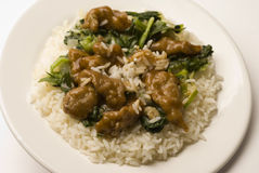 Mongolian beef with rice Stock Images