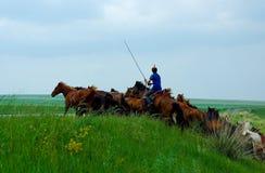 Mongolian cowboy Stock Photo