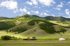 Mongolian Ger Home. A her with a small herd of cattle rest below a mountain in northern Mongolia Stock Photos