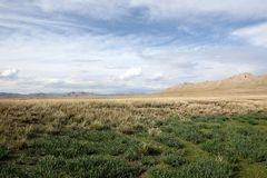 Mongolian Grasslands Royalty Free Stock Image