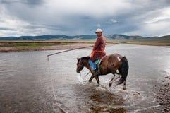 Mongolian herder Stock Images