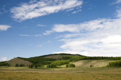 Mongolian Hills. Small forested hills with the vast steppes in front in northern Mongolia Royalty Free Stock Photography