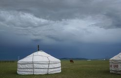 Mongolian Home. The herdsmen`s family on the Mongolia prairie Royalty Free Stock Photos