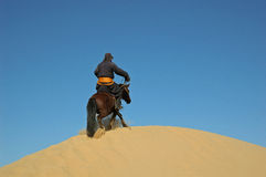 Mongolian horseman Royalty Free Stock Image