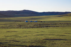 Mongolian house is call GER Royalty Free Stock Photo