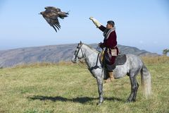 Mongolian hunter launches golden eagle to pursue prey circa Almaty, Kazakhstan. stock image