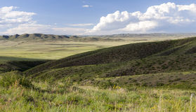 Mongolian Landscape with Horses Stock Photo