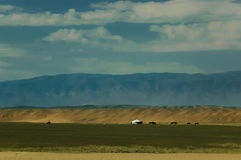 Mongolian landscape with horses and yurts Stock Images