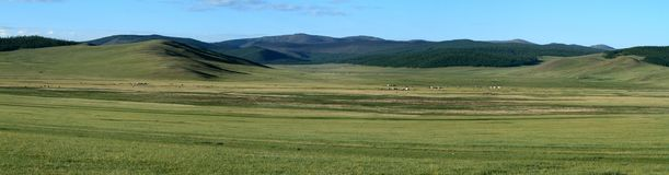 Mongolian Landscape and Nature Royalty Free Stock Photo