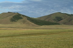 Mongolian Landscape and Nature Royalty Free Stock Image