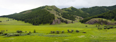 Mongolian Lanscape with Small Creek. A small creek twists along the valley below the forested mountains of northern Mongolia Royalty Free Stock Photo