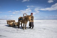 Mongolian man with his horse sledge on frozen lake Khovsgol. In Mongolia Royalty Free Stock Photography