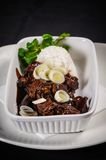 Mongolian meat. Authentic Mongolian dish combined with Bosnian cuisine seasonings, amazing meal made for those who recognise quality cuisine Royalty Free Stock Image