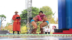 Mongolian national wrestling on belts. Mongolian wrestling jackets stock footage