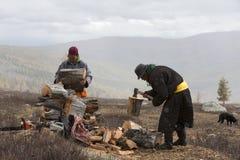Mongolian nomad men cutting firewood royalty free stock photo