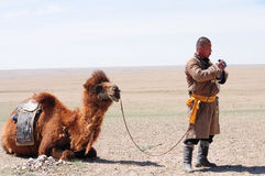 Mongolian nomadic herdsman with his camel Stock Photos