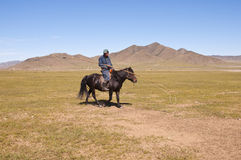 Mongolian people. A mongolian horseman in typical mongolian dress is looking his cows Stock Photography