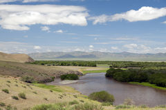 Mongolian River Landscape Stock Photography