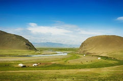 Mongolian steppe. With grassland, yurts, horses and blue sky with white clouds Royalty Free Stock Image
