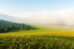 Mongolian steppe in the morning Stock Photos