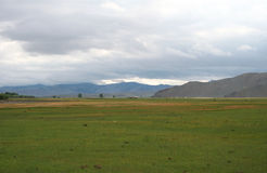 Mongolian steppe Royalty Free Stock Photo