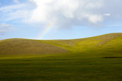 Mongolian Steppes. The vast grasslands of the Mongolian steppes Royalty Free Stock Photo