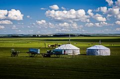Mongolian tents on the prairie stock images