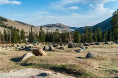 Mongolian valley. Wild forest in the stone valley. Mongolia Royalty Free Stock Images