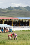 Mongolian Wrestling Match. Mongolian wrestlers in a match as their trainers look on Stock Photos