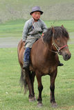 Mongolian young rider Stock Photography
