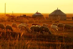 Mongolian Yurt. According to the historical records of the Xiongnu,an ancient ethnic group ,their ancestors lived in the Northland long ago .Their living Royalty Free Stock Photography