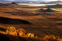 Mongolian yurt Stock Images